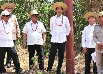Presiden Jokowi didampingi sejumlah pejabat meninjau salah satu lokasi alternatif pengganti ibu kota RI, di Kab. Gunung Mas, Kalteng, Rabu (8/5) siang. (Foto: Humas)