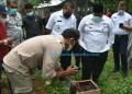 Wagub Sumbar Audy Joinaldy didampingi Bupati Padangpariaman Suhatri Bur meninjau budidaya Lebah Trigona di daerah itu. (Humas)