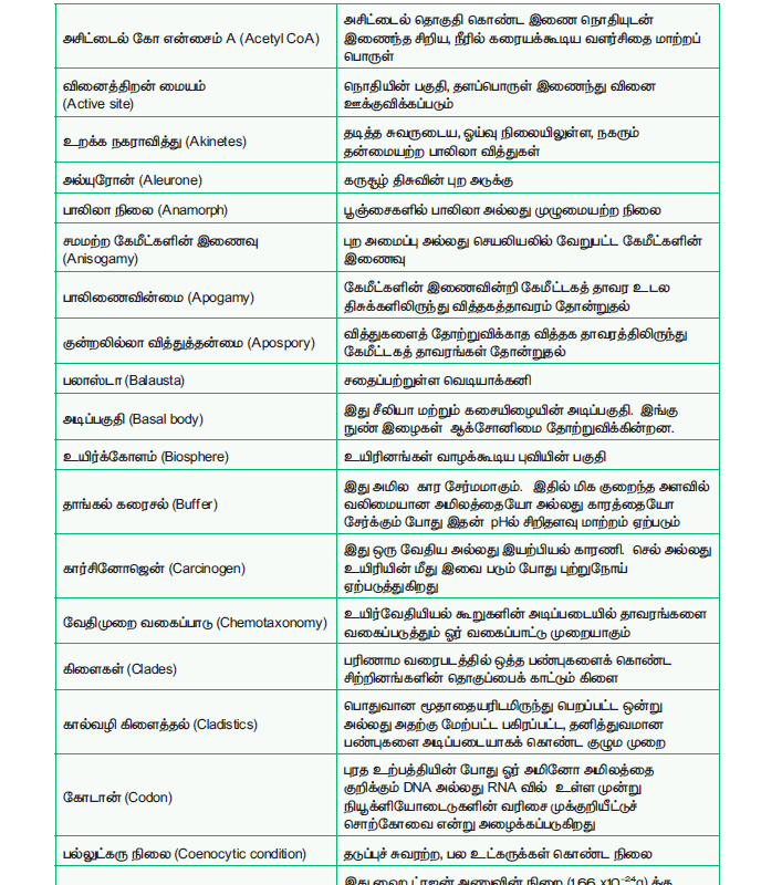 Tamil Medium 11th Standard Bio – Botany Volume 1 Online - tn11thcom 278