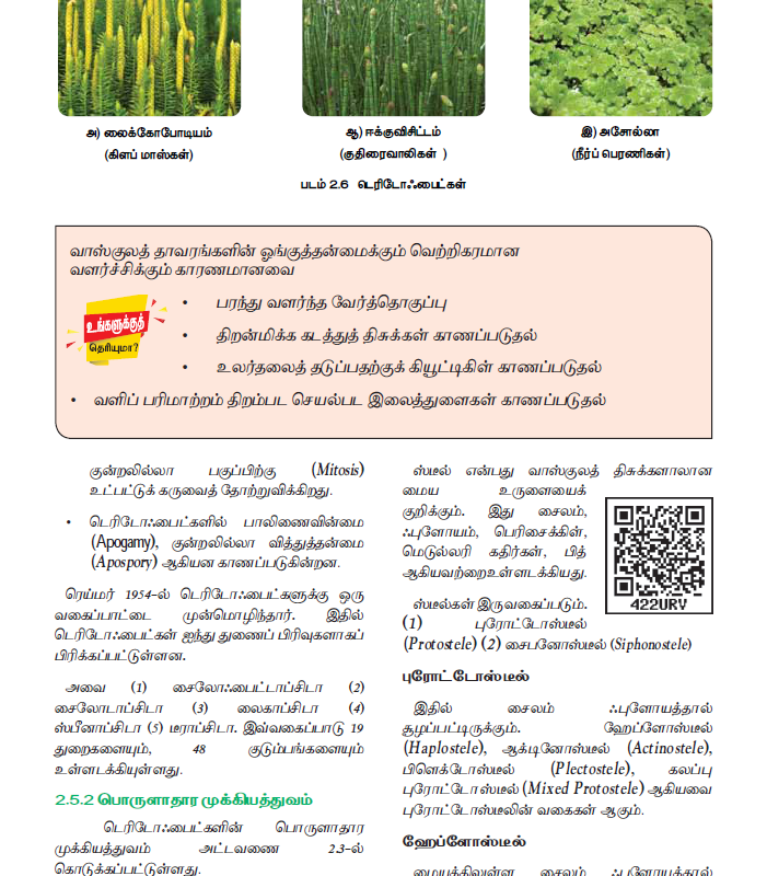 Tamil Medium 11th Standard Bio – Botany Volume 1 Online - tn11thcom 68