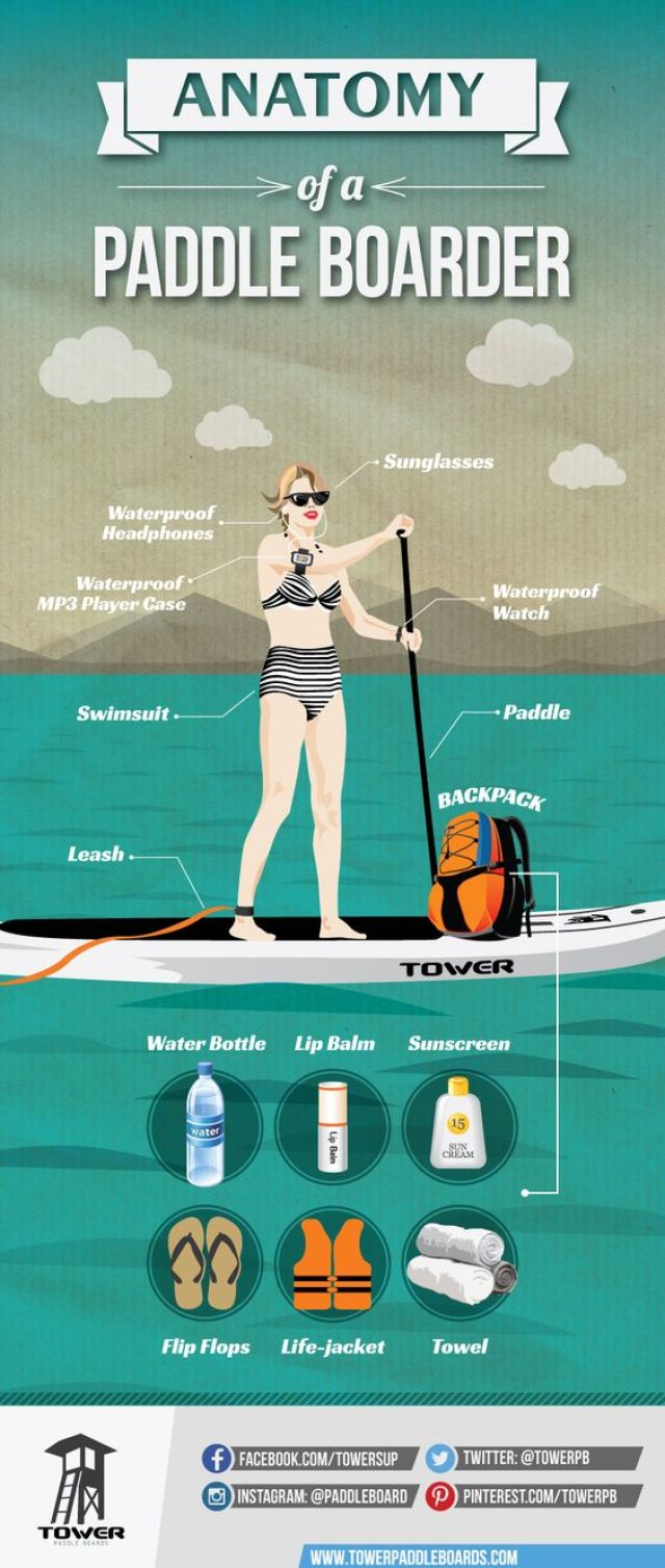 Anatomy of a paddleboarder