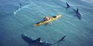10 Golden Rules of Kayak Safety