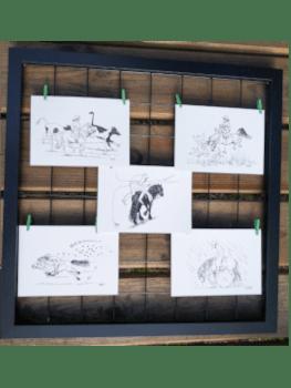 ansichtkaarten paarden buitenrijden