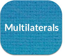 Multilaterals
