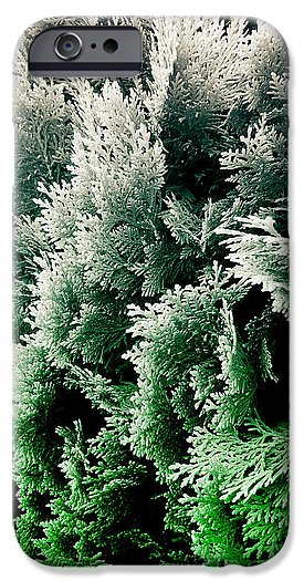 cypress foliage photograph No.5 phone case