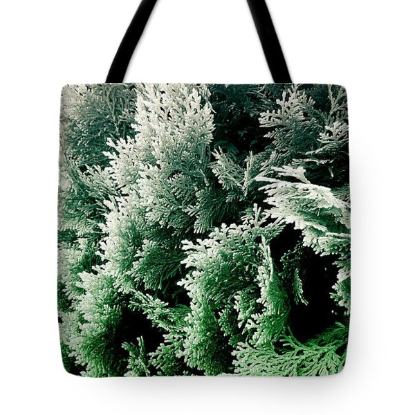 cypress foliage photograph No.5 tote bag