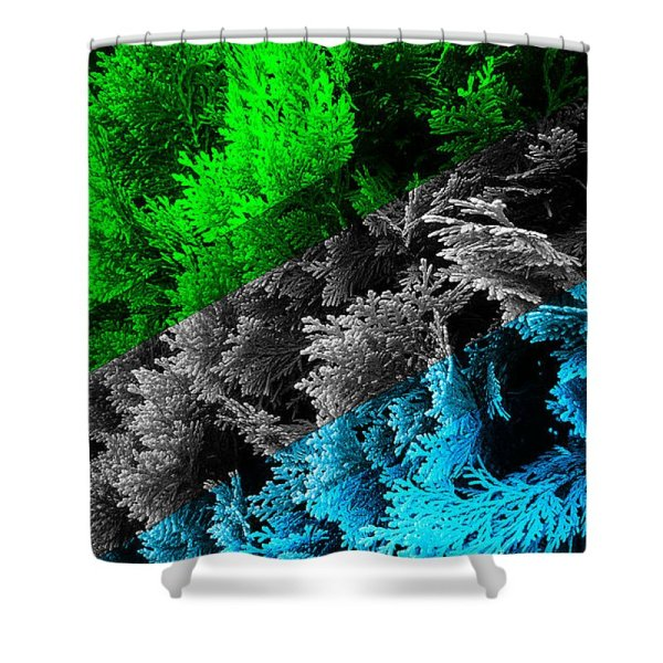 cypress branches no.6 shower curtain