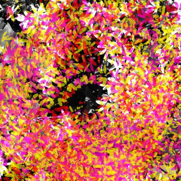 Abstract colorful swirl in pink and yellow