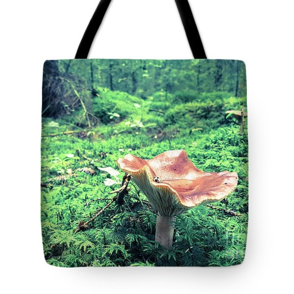 Mushroom in the woods tote bag