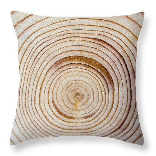 Concentric tree rings throw pillow