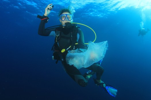 underwater - scuba diver - conservation - ocean health