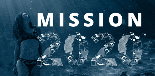 Mission 2020 - Marine Litter