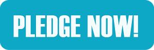 pledge now - pledge button