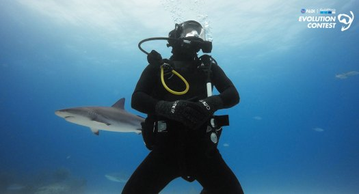 PADI Go Pro Evolution Contest - Underwater Contest - Underwater Photography - Shark Diving