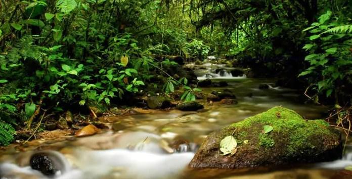 tipos de actividades turisticas de colombia