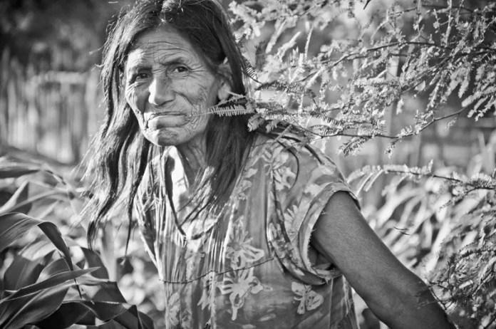 principales grupos etnicos de argentina