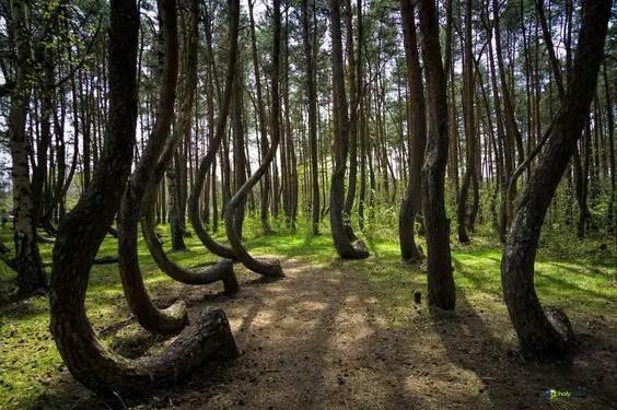 maravillas naturales en polonia