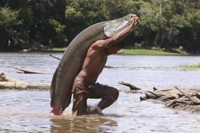Pirarucú, es un plato emblemático de Amazonas