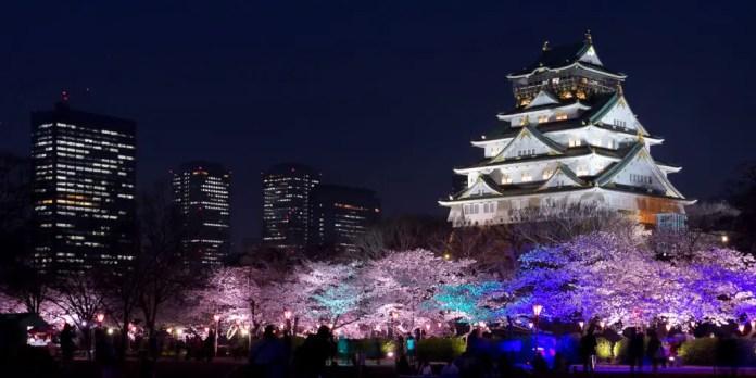 paisajes de japon sakura