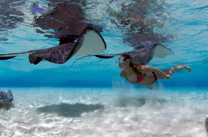 que playa del mar caribe es la mejor