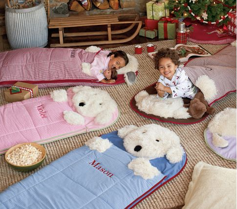 These Pottery Barn Sleeping Bags For Kids