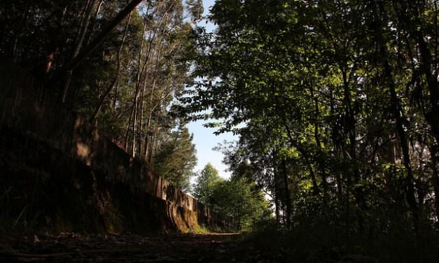 Ecos das jornadas arciprestais do Fundão