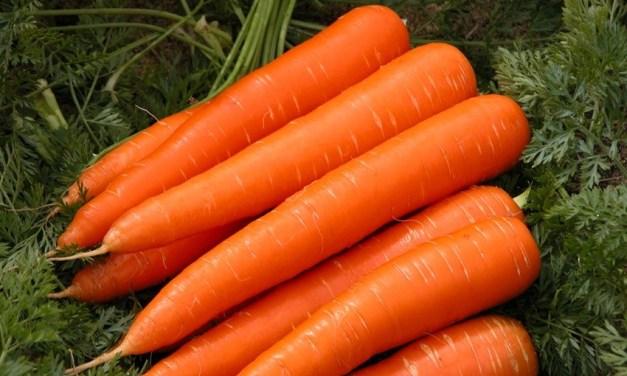 Receitas cá de casa: Bolo de cenoura