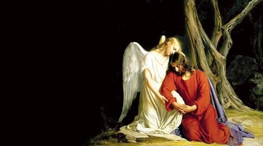 """Szczególna dedykacja ks. Jarka dla wszystkich domów modlitwy św. Charbela - Claire Ryann lat 3 śpiewa: """"Getsemani"""""""