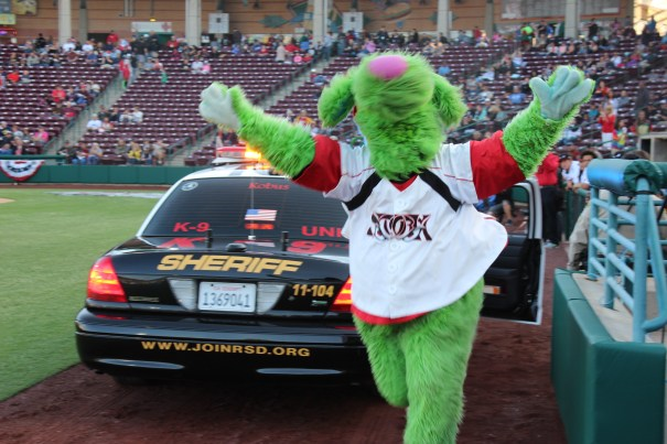 Lake Elsinore Mascot - Thunder! (Photo by Rebecca Herman)