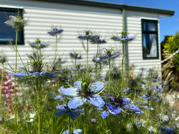Padstow holiday park staying safe
