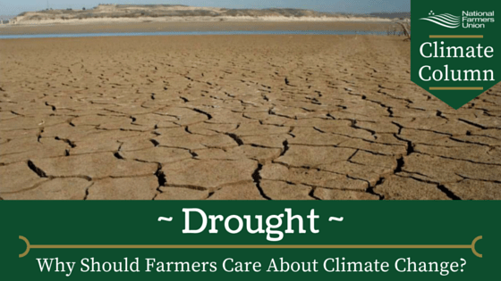 Climate Column - Drought
