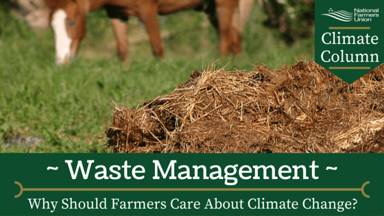 climate-column-waste-management