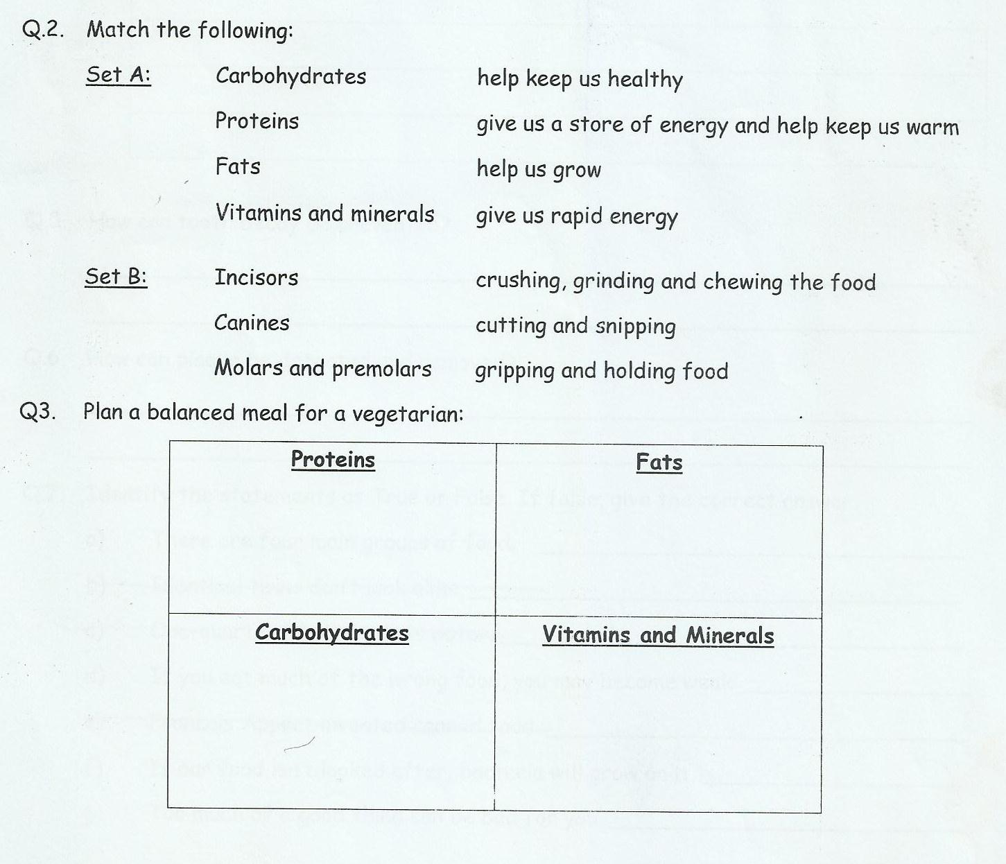 Class 3 Home Work Worksheets