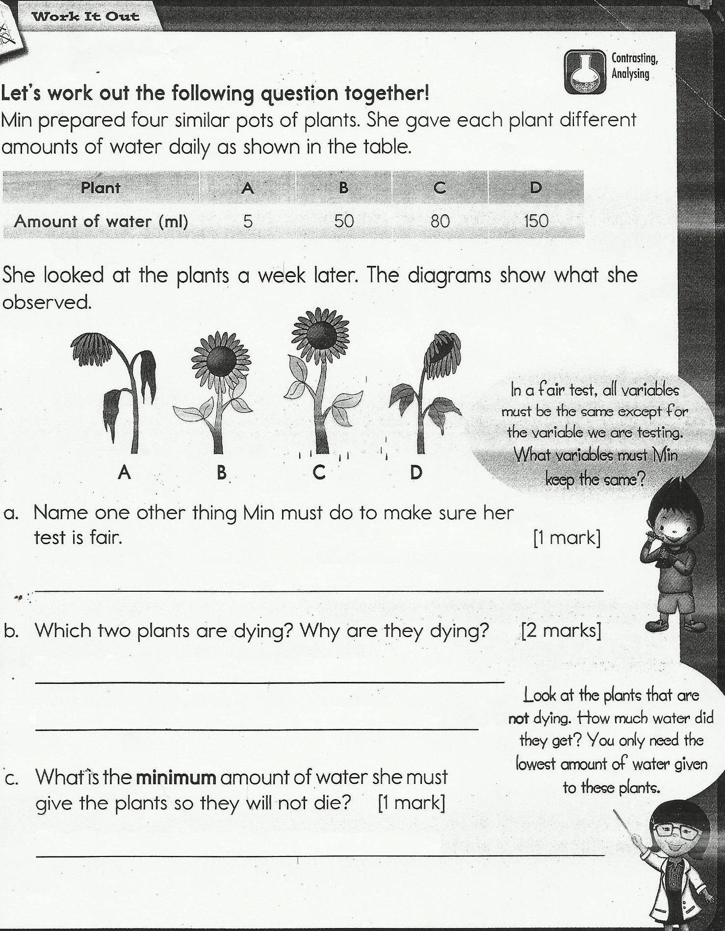 Science Blog Worksheet Class 3
