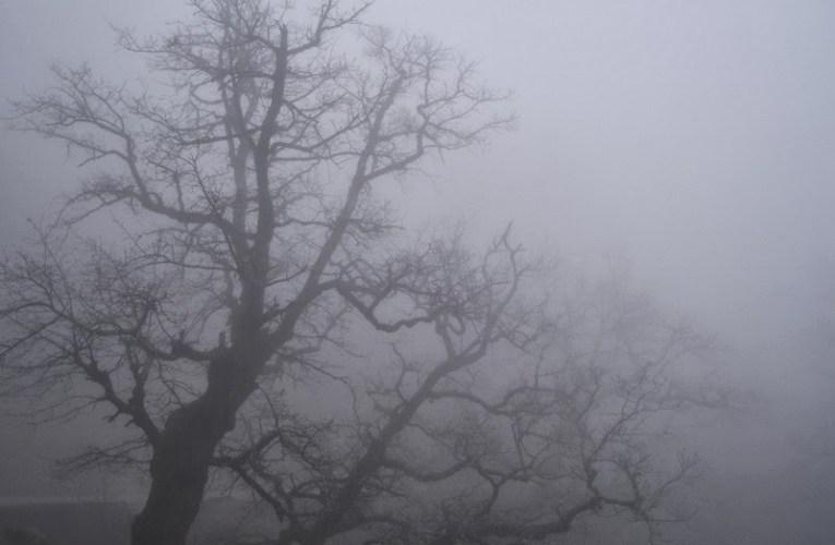 Πυκνή ομίχλη στην Πάφο