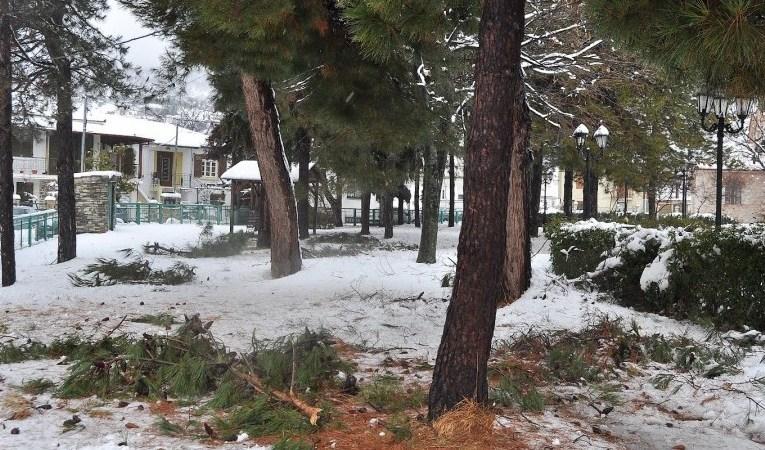 Κλειστά σχολεία και δρόμοι στην Πάφο λόγω χιονόπτωσης