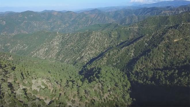 Προκαλεί Ίλιγγο – Video από Drone στο Δάσος της Πάφου