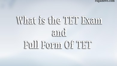 What is the TET Exam