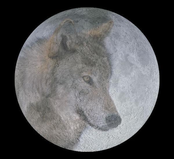 wolf_moon_big