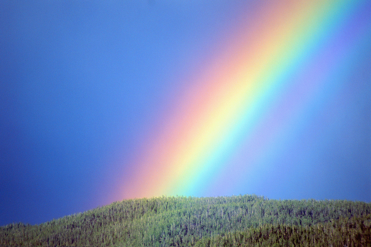 Paganpages rainbow he biocorpaavc