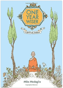 one year wiser book cover