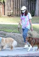 aubrey plaza pictured walking with her dogs in los angeles 3. o 128w 186h