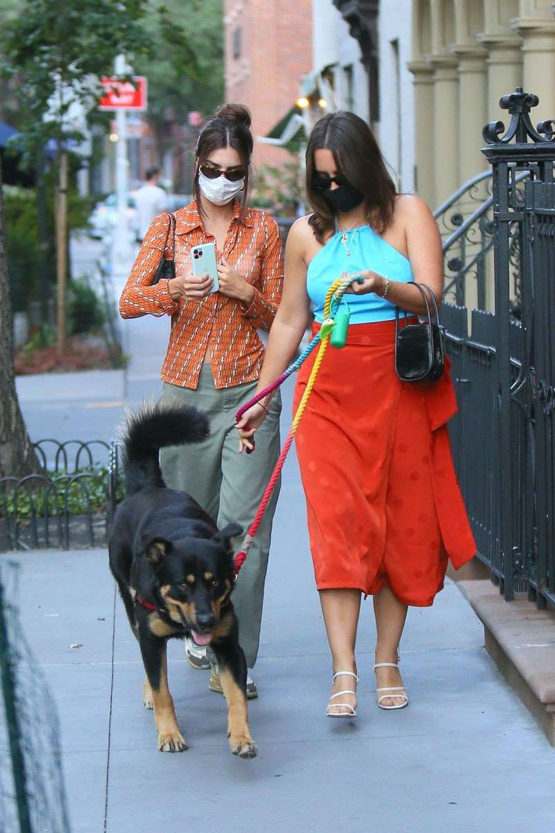 Emily Ratajkowski seen walking her dog Colombo with a friend and husband in New York City