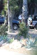 Kendall Jenner seen hiking in Malibu with her dad and a friend in Malibu