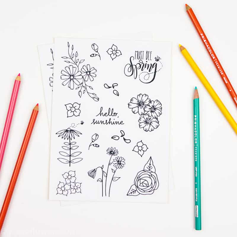 15 Printable Floral Planner Stickers to Beautify Your Entire Routine-3 | Floral planner stickers with colored pencils | pageflutter.com
