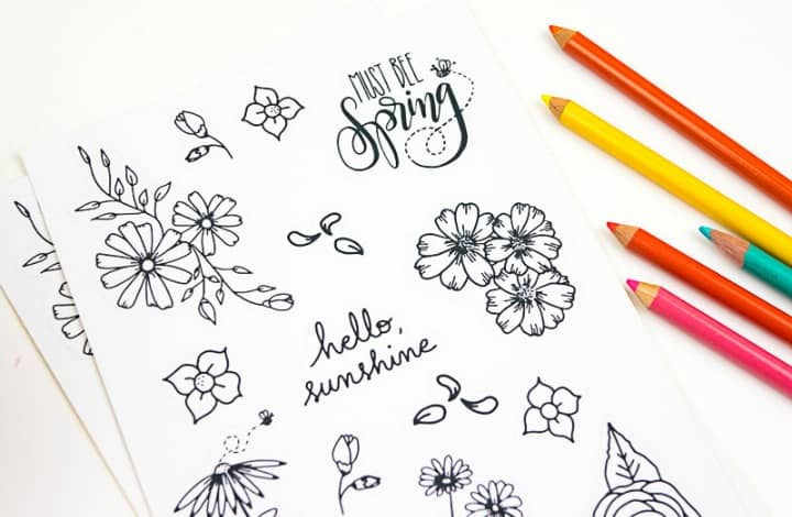 15 Printable Floral Planner Stickers to Beautify Your Entire Routine
