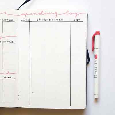 30+ Super Trackers For Your Planner:Daily, Monthly, Yearly| pink bill track (2) | Jihi Elephant for pageflutter.com