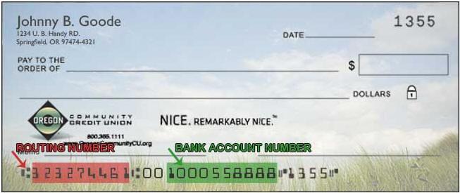 Chase Bank Routing Transit Number