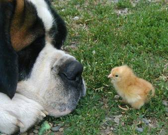 """Don't call me """"chick"""", bitch."""