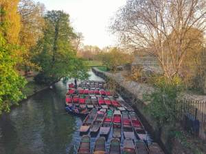 Oxford City - Oxford Dictionary: Punt